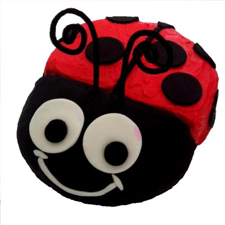 boy ladybug baby shower birthday cake DIY kit from Cake 2 The Rescue