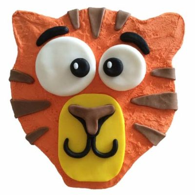 cute tiger jungle themed birthday cake DIY cake kit from Cake 2 The Rescue