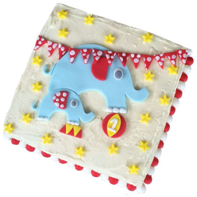 easy boy circus elephant baby shower birthday cake DIY kit from Cake 2 The Rescue