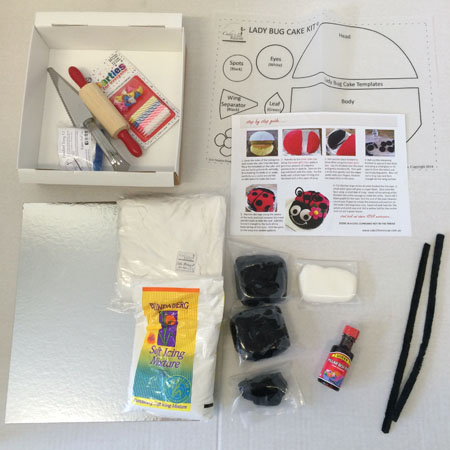 easy boy ladybug cake kit contents from Cake 2 The Rescue