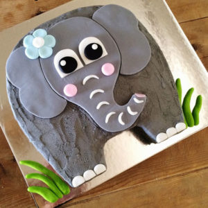 easy elephant baby shower cake kit from Cake 2 The Rescue