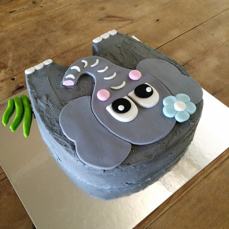 Admirable Elephant Diy Cake Kit Baby Shower 1St Birthday Cake Ideas Funny Birthday Cards Online Overcheapnameinfo