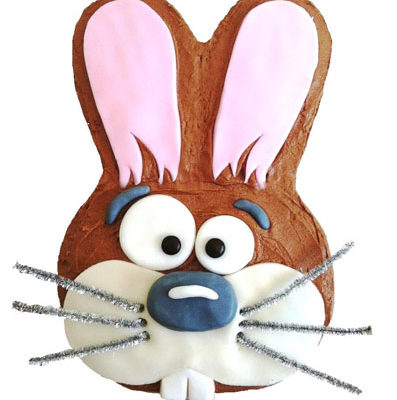 easy hop hop easter bunny DIY kit from Cake 2 The Rescue