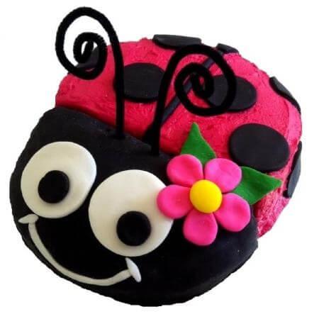 diy-ladybug-babe-cake-kit-450