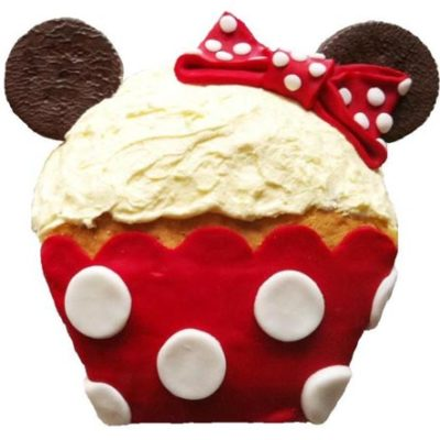 mini cupcake birthday girl and mini mouse themed birthday party DIY cake kit from Cake 2 The Rescue