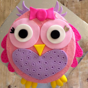 Owlet birthday cake kit from Cake 2 The Rescue