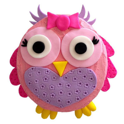 owlet girls first birthday cake DIY kit from Cake 2 The Rescue