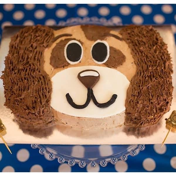 Puppy Dude Cake Kit Boys Birthday Cake Recipe Kit Diy