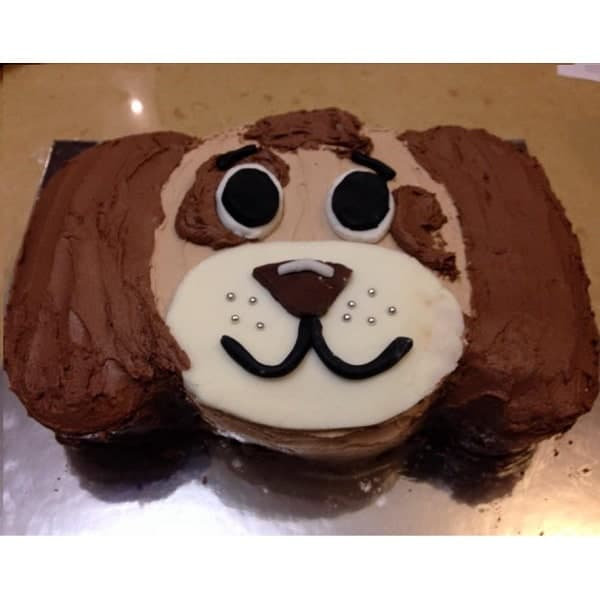Puppy Dude Cake Kit. Boys Birthday Cake Recipe Kit DIY