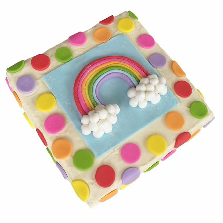 Rainbow cake first birthday cake DIY kit from Cake 2 The Rescue