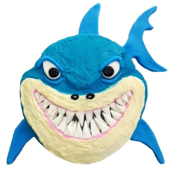 Sharky Cake Kit Boys Birthday Cake Recipe Kit Diy