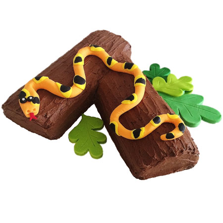 Snake birthday cake DIY kit from Cake 2 The Rescue