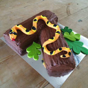 Snake reptile birthday cake kit from Cake 2 The Rescue