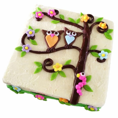 tree owl baby shower and birthday cake DIY kit from Cake 2 The Rescue