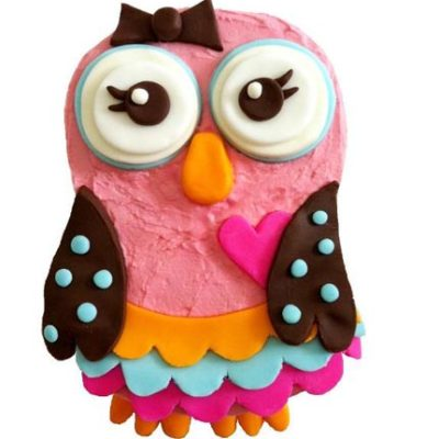 whoot babe owl themed birthday girl party DIY cake kit from Cake 2 The Rescue