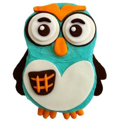 whoot dude owl themed birthday boy party DIY Cake kit from Cake 2 The Rescue
