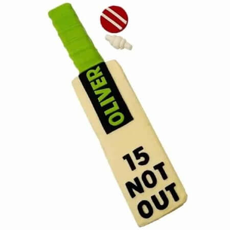 diy-cricket-bat-cake-kit-450