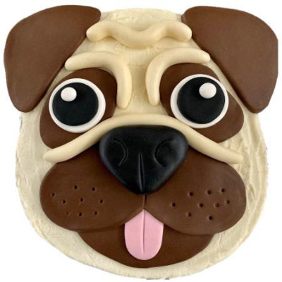 cute pug dog birthday cake DIY kit from Cake 2 The Rescue