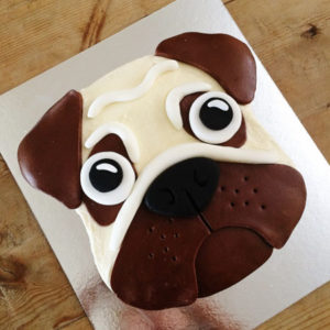 Pug dog boy birthday cake kit from Cake 2 The Rescue