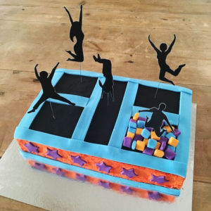 Trampoline birthday cake kit from Cake 2 The Rescue