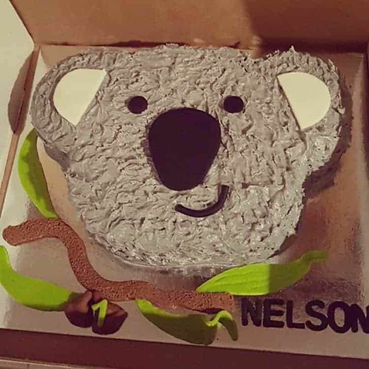 Koala Cake Kit Birthday Diy Cake Kit Australia Day