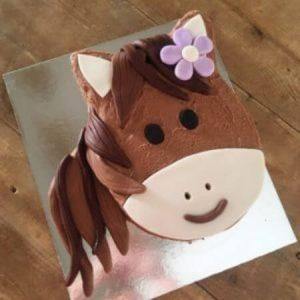 diy-pony-diy-cake-kit-table-450