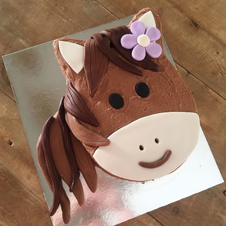 pony farmyard birthday cake kit from Cake 2 The Rescue