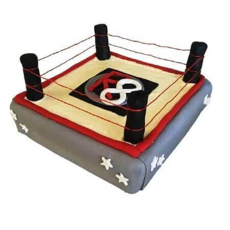 diy-boxing-wrestling-ring-cake-kit-450