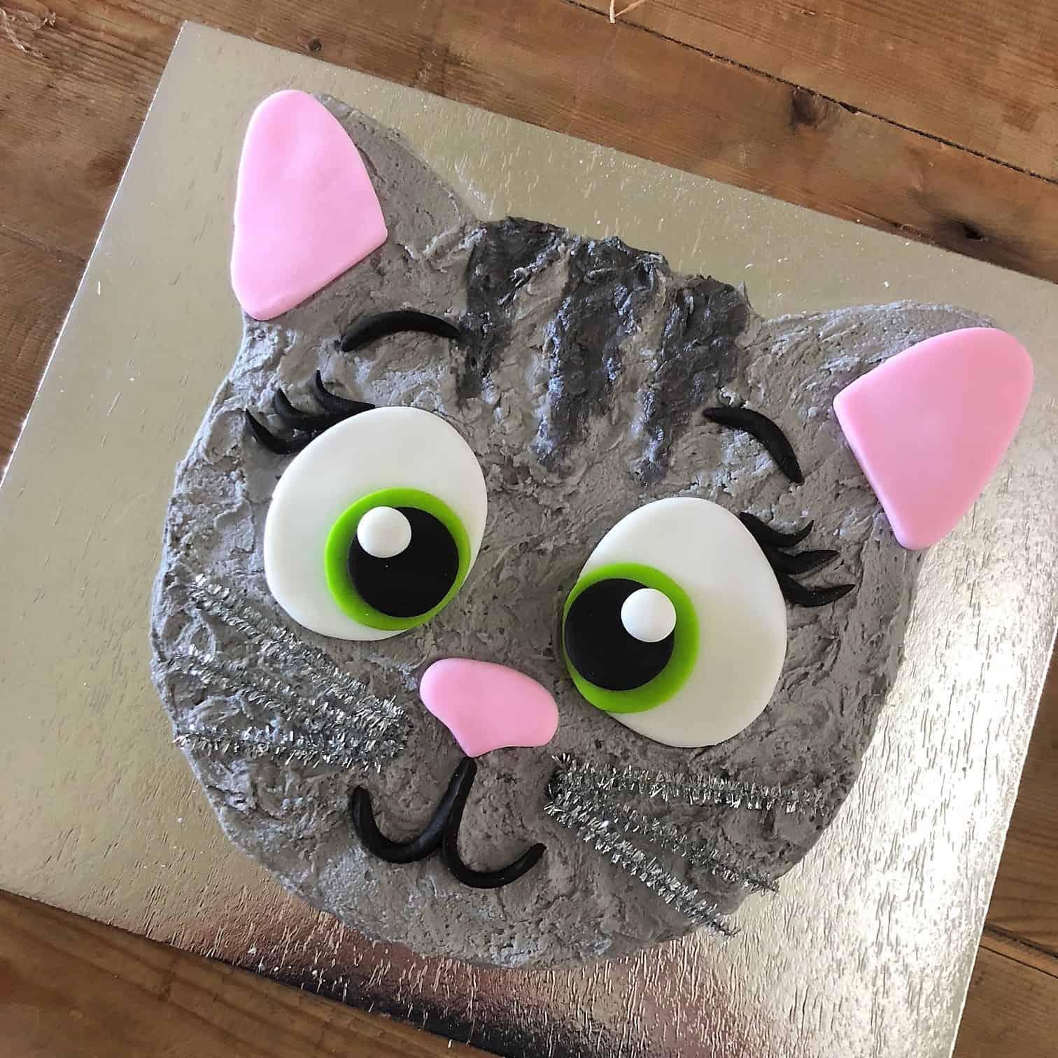 kitten cake kit girls birthday cake diy kit cat cake