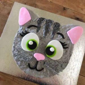 diy-kitten-cake-kit-wooden-450