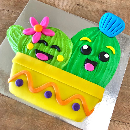 Cactus Mexican Fiesta birthday cake kit from Cake 2 The Rescue