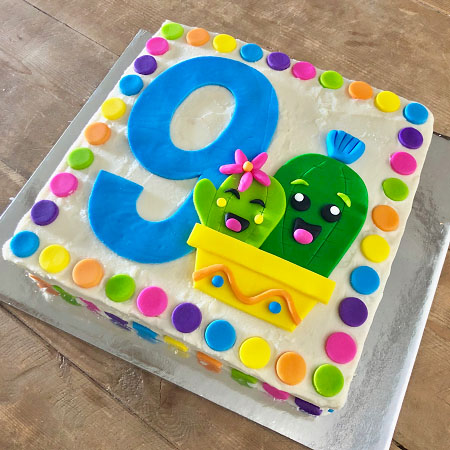 mexican fiesta themed birthday number cactus cake DIY kit from Cake 2 The Rescue