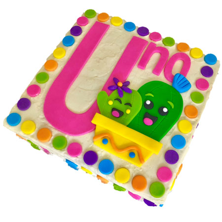 number cactus first birthday cake DIY kit from Cake 2 The Rescue