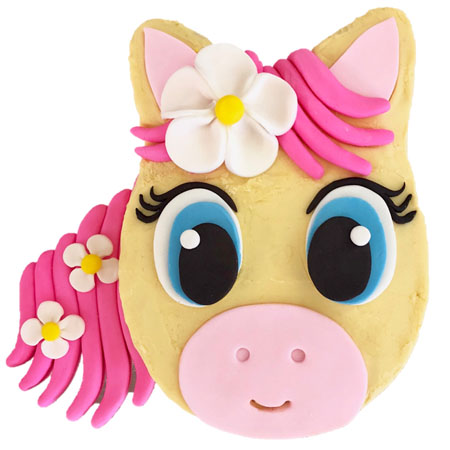 flower pony birthday cake DIY kit from Cake 2 The Rescue