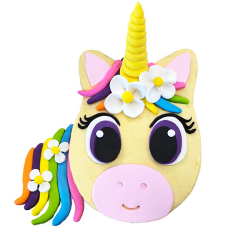 flower unicorn birthday cake DIY kit from Cake 2 The Rescue