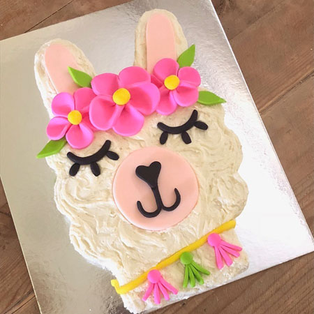 Wondrous Easy Diy Llama First Birthday Teen Or Tween Cake Kit Funny Birthday Cards Online Inifodamsfinfo