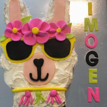 no-drama-llama-diy-birthday-cake-kit