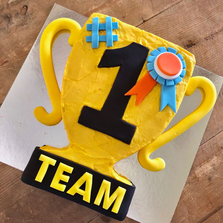 sporting club team trophy presentation cake DIY cake kit from Cake 2 The Rescue