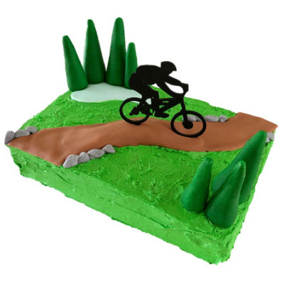 mountain bike track kids birthday party cake DIY cake kit from Cake 2 The Rescue