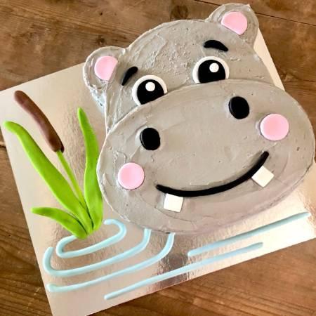 Wondrous Jungle Party 1St Birthday Hippo Diy Cake Kit Cake 2 The Rescue Personalised Birthday Cards Akebfashionlily Jamesorg