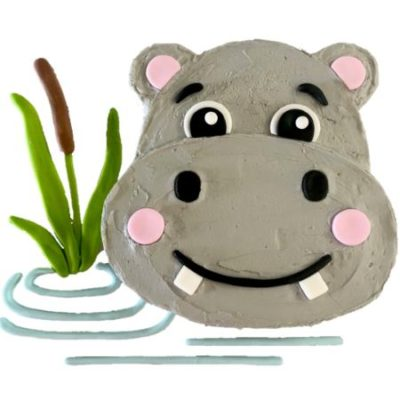 hippo first birthday cake jungle themed party DIY cake kit from Cake 2 The Rescue