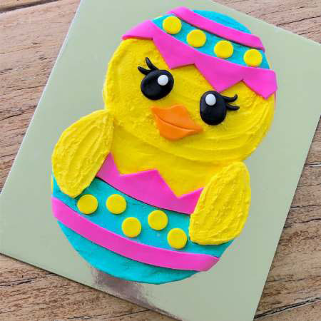 fun first birthday chick cake DIY cake kit from Cake 2 The Rescue