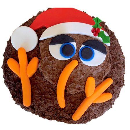 newzealand-theme-christmas-cake-kiwi-bird