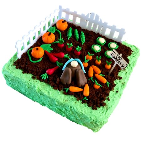 peter-rabbit-garden-cake-kit