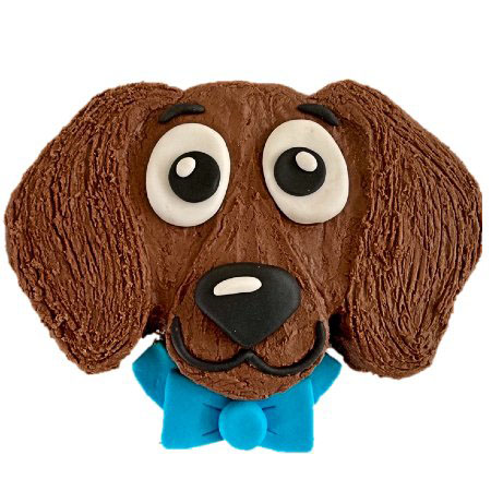 cute dachshund birthday boy cake DIY kit from Cake 2 The Rescue