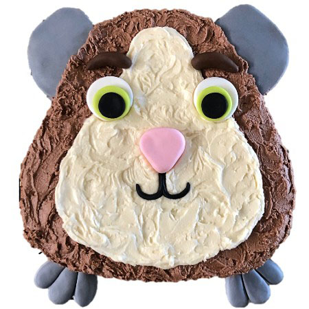 cute guinea pig birthday cake DIY kit from Cake 2 The Rescue