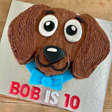 easy dachshund dog birthday girl cake kit from Cake 2 The Rescue