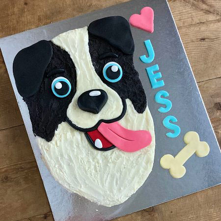 easy sheep dog border collie birthday cake kit from Cake 2 The Rescue