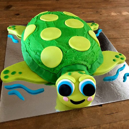 turtle birthday cake kit DIY from Cake 2 The Rescue