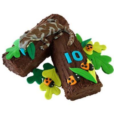 reptile-birthday-party-cake-kit